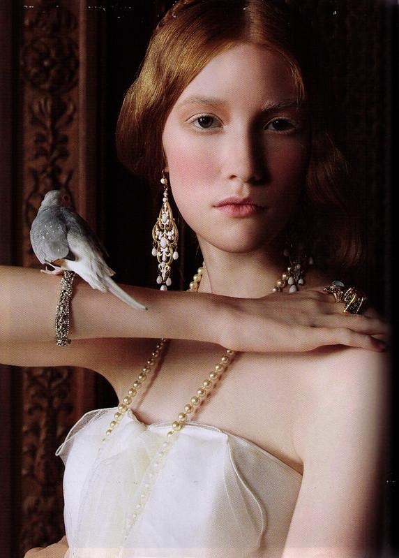 belladonnabird