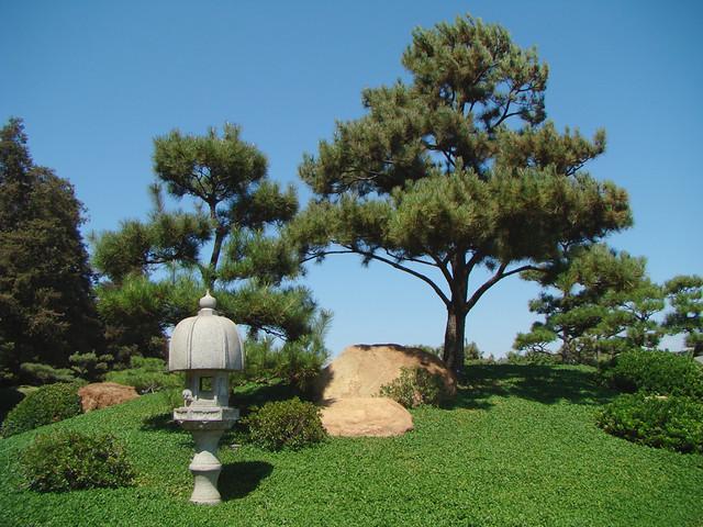 Japanese Garden   Los Angeles, California | Various Pines, P ...