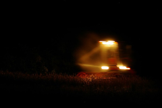 Nocne żniwa / Night harvest