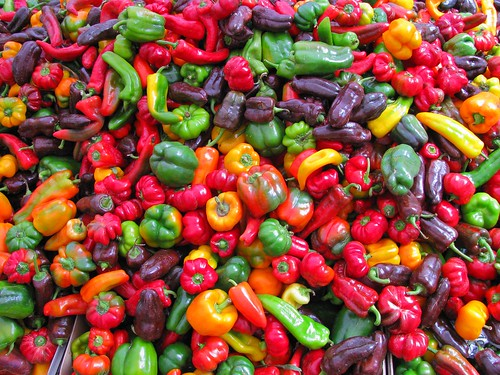 Colorful veggies for sale in Daley Plaza | by wsilver