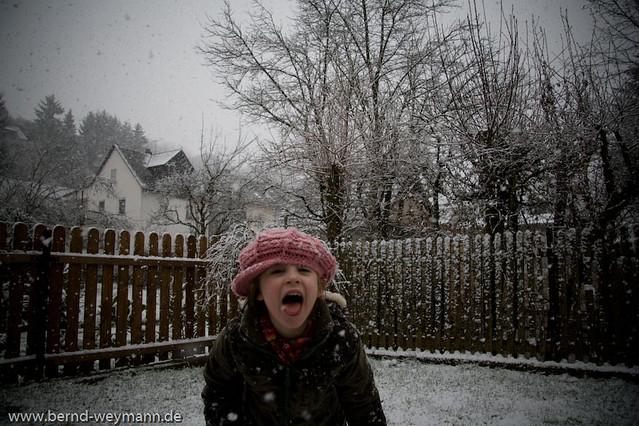 Schneeflockenschnapper