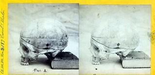 cp 2187 skull stereo | by otisarchives3