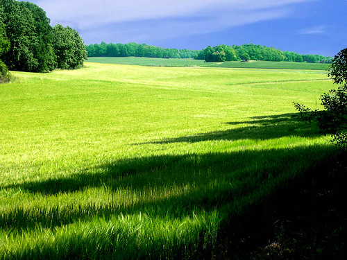 Landscape - Green  View, Halla | by Olof S