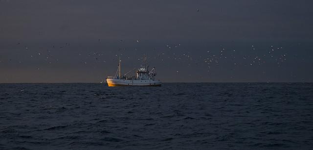 Fishing with Måtind from Bleik