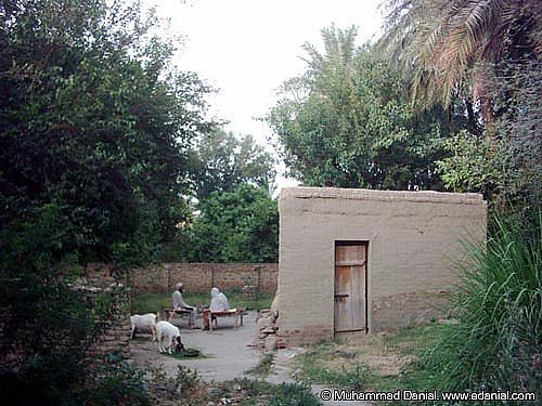 Village Life in Paniala | Paniala is a small village located
