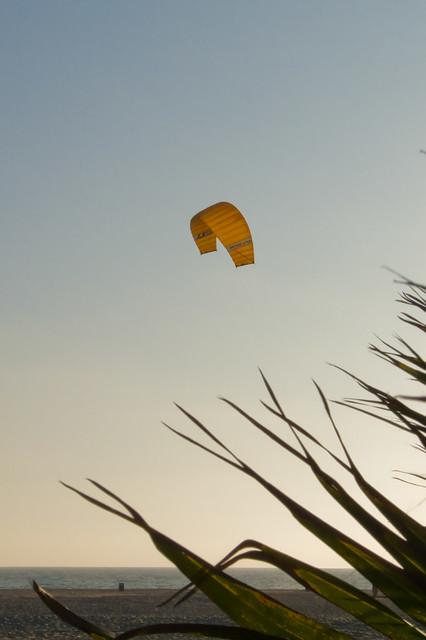kites at sunset -- 9/2/08