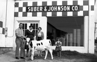 People with prize heifer - Tallahassee