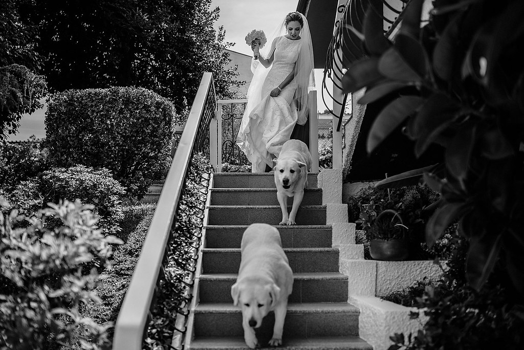 portugal-wedding-photographer_201609