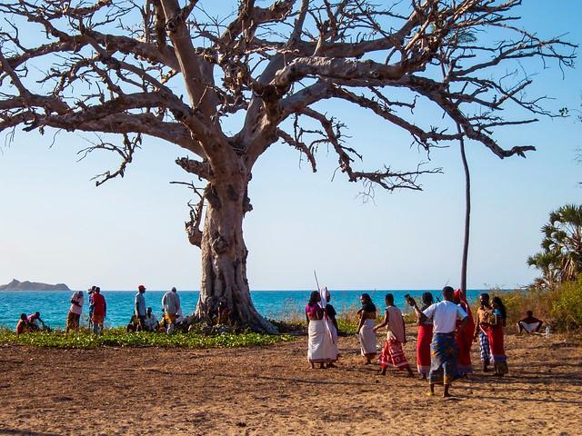 Madagascar8 - 005.jpg