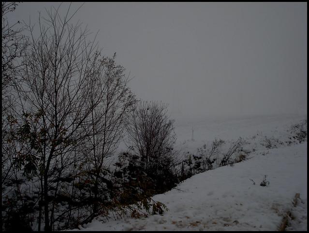 Neve 2009 -4-