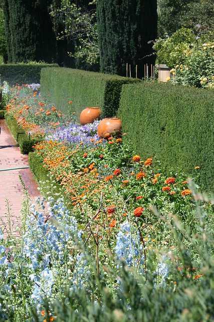 Filoli Gardens - Flower Bed