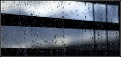Raindrops on the Window I