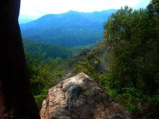 Mountain and rock. Trees and trees!!! (Taman Negara 2008 Sec 3 Adventure Camp)