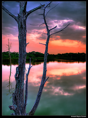 park sunset nature digital bay high twilight peace dynamic dusk tranquility bayou serenity area range preserve armand hdr hdri seabrook dickinson blending kemah ineffable platinumphoto theunforgettablepictures goldstaraward top20texas bestoftexas