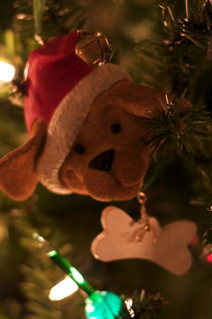 Noel decor photo