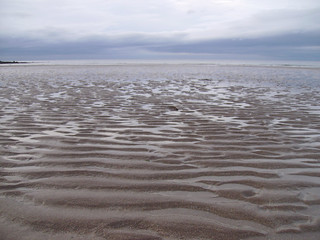 Ripples in the Sand | by NOAA's National Ocean Service