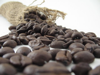 Coffee Beans | by Stirling Noyes