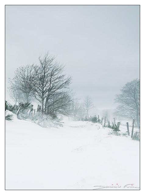 White Road towards elsewhere