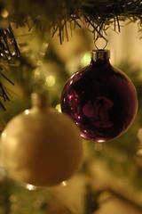 Christmas 2008 Bokeh