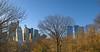 Central Park South by -ytf-