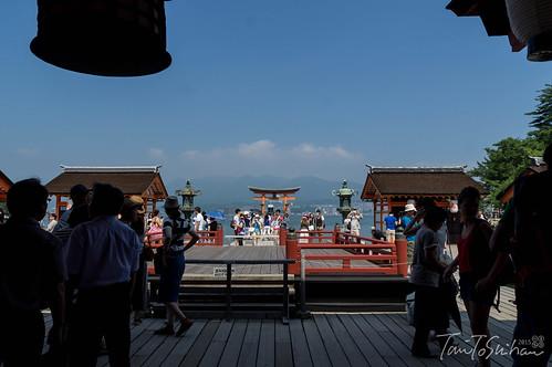 厳島神社 管絃祭 2015 (Kangen-sai 2015, Itsuku-shima Shrine) | by Tony Tani