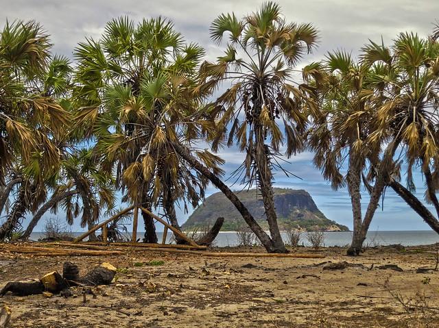 Madagascar8 - 061.jpg