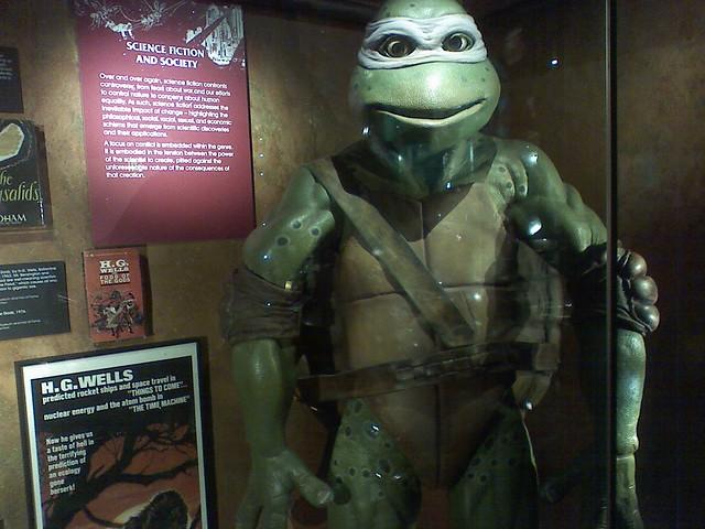 Turtle Under Glass