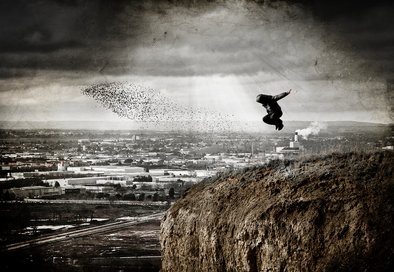 si les cons pouvaient voler (V2) by Stéphane Giner