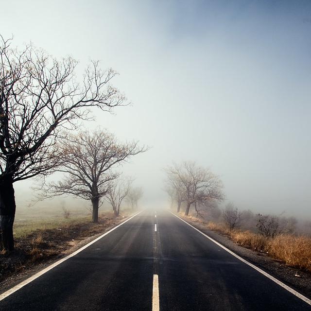 Hacia donde vamos?