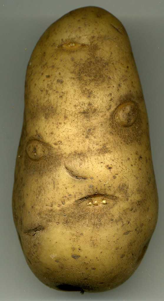 Angry Mr Potato Head Found This Inside A Bag Of