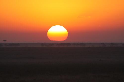 dawn gettyimages kenya mara savannah sun getty images
