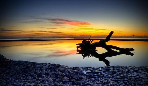 monster sunrise tidalpool seacreature nudgeebeach bestofaustralia