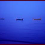 blue ( Explore)