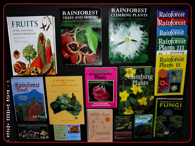 UPDATED - Resources for Identifying Australian Rainforest Plants, Trees and Fungi - Updated Sept. 2008