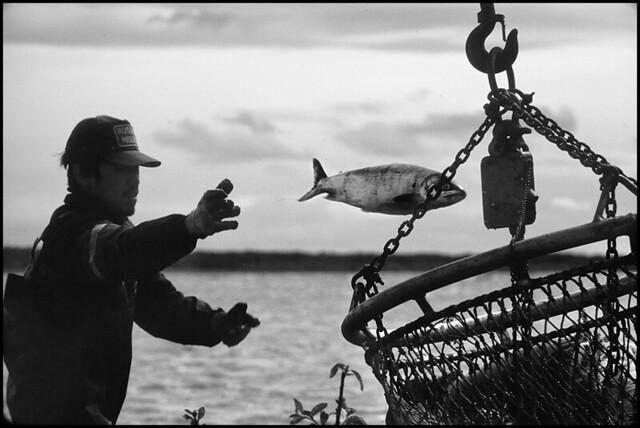 Fishing - Yukon River