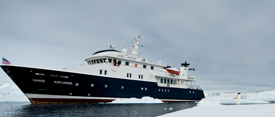 Hanse Explorer + Penguin