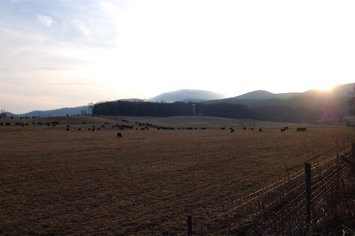 sunset cloud mountain geotagged virginia cows geo:lat=37096744 geo:lon=81374445