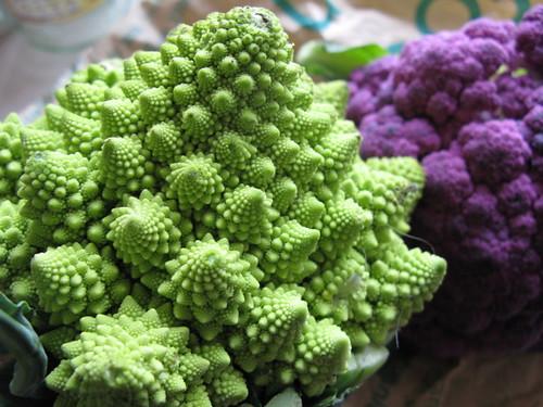 Romanesco & purple cauliflower