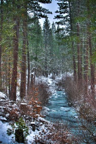 trees winter snow creek canon stream goldendale hdr lightroom 30d tonemapped canonef70200mmf28lisusm johny~