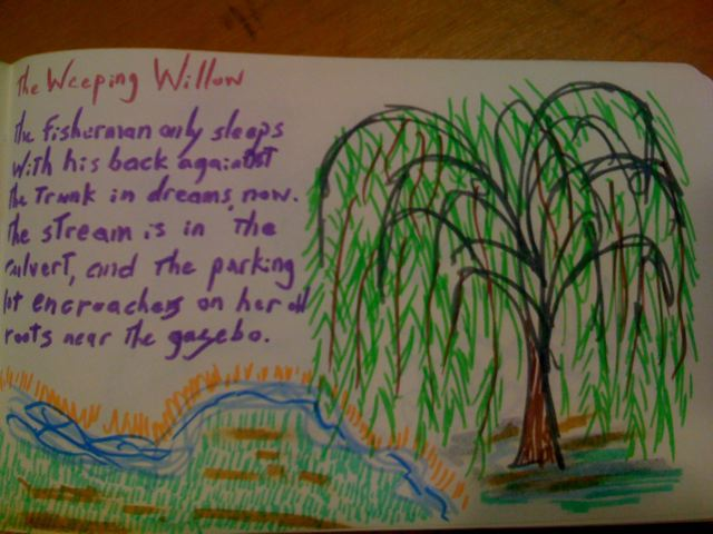 Weeping Willow Poem A Student Saw My Drawing Of The Spring