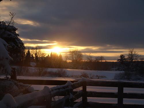 winter light sunset sun snow tree ice fence fields