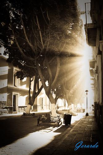 Rays of Light / Rayos de Luz - Puebla