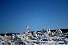Ledová krajinka