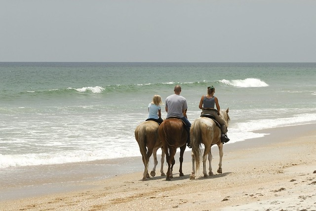 Horseback Riding in Riviera Maya