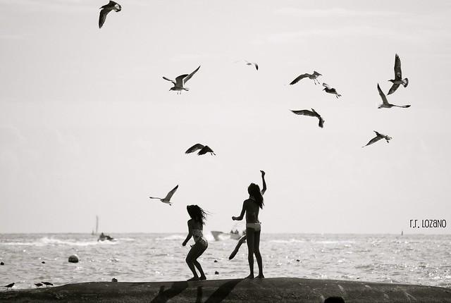 Felicidad/Happiness