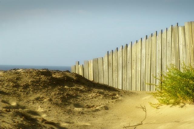 Punta del Diablo [ 54 of 86 ]