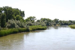 North Platte River | by davidburn