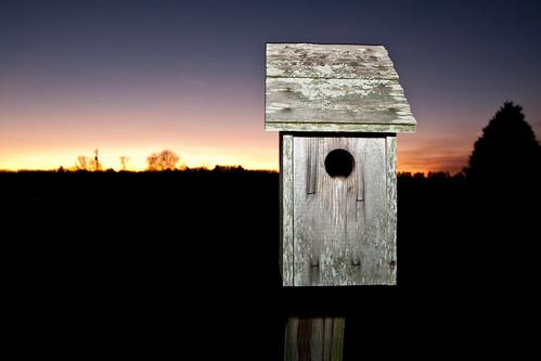 christmas family sunset sky virginia colorful birdhouse amelia