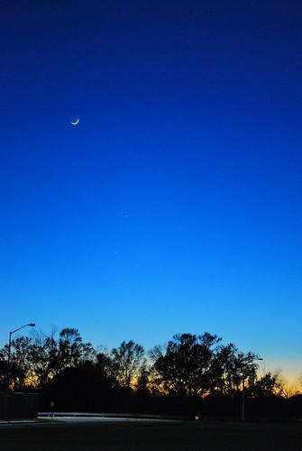 blue trees sunset sky nikon louisiana lafayette horizon 2008 crescentmoon d60 0356 cmwdblue