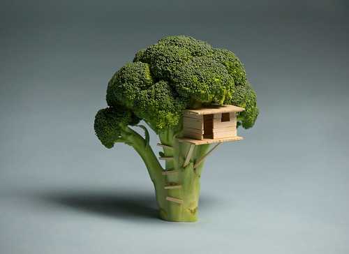 Broccoli House | by Laser Bread